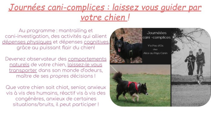 Journées cani-complices !