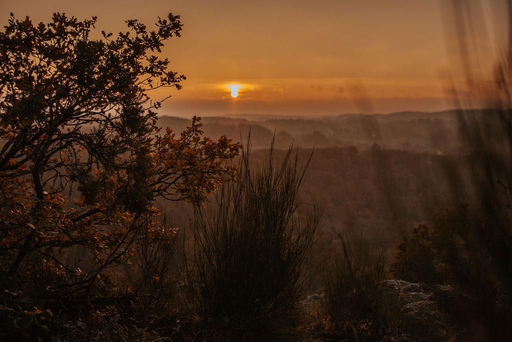 Alice Levacher, comportementaliste éducateur canin