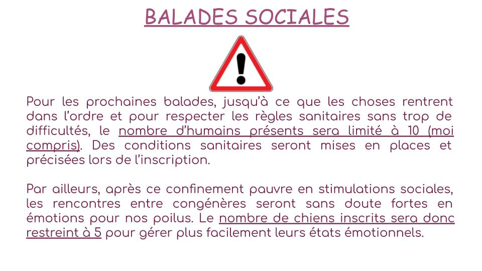 Balades sociales
